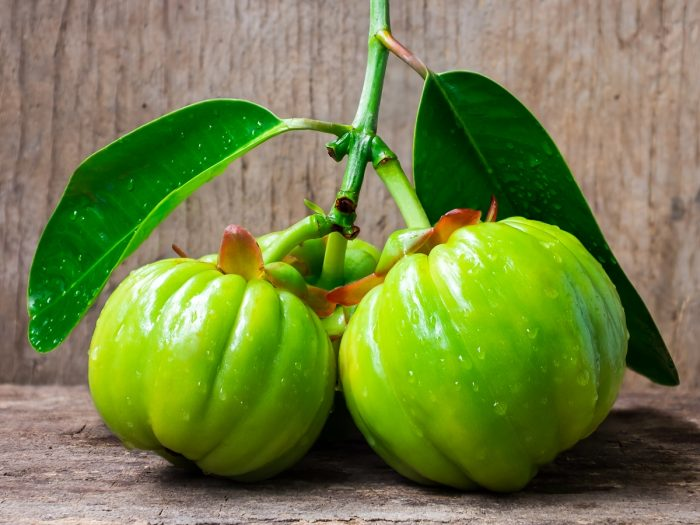 Garcinia Cambogia Weight Loss Wonder Or Total Fiction Fitness